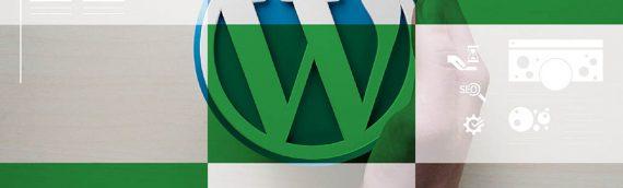 WordPress ili custom CMS rješenje za Vašu web stranicu?