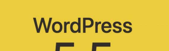 Zašto novo ažuriranje na WordPress 5.5. ruši stranice